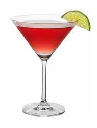Cranberry Lime Mocktail