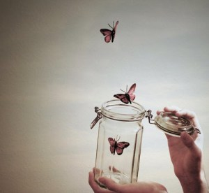 butterfly let go